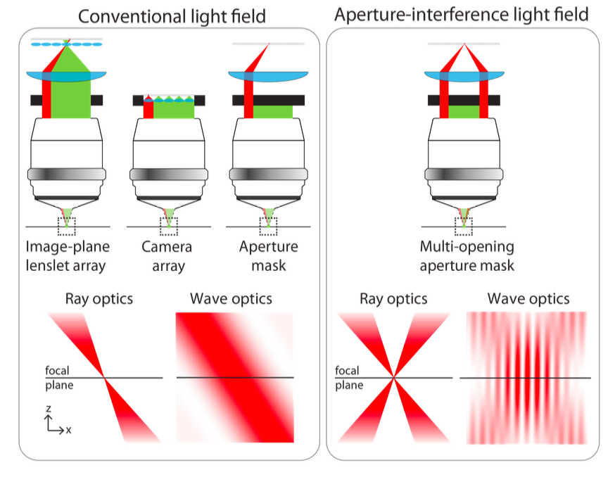 Computational imaging aperture interference light field fluorescence aperture interference increases spatial resolution left conventional methods for recording spatio angular ccuart Images